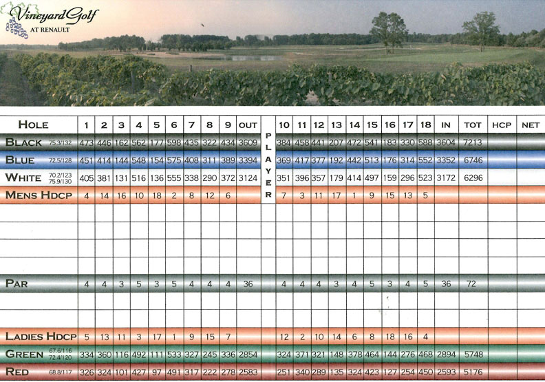vineyard scorecard